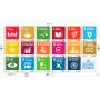 SDG_Minisheet_NY