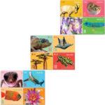 ES17_stamps-set